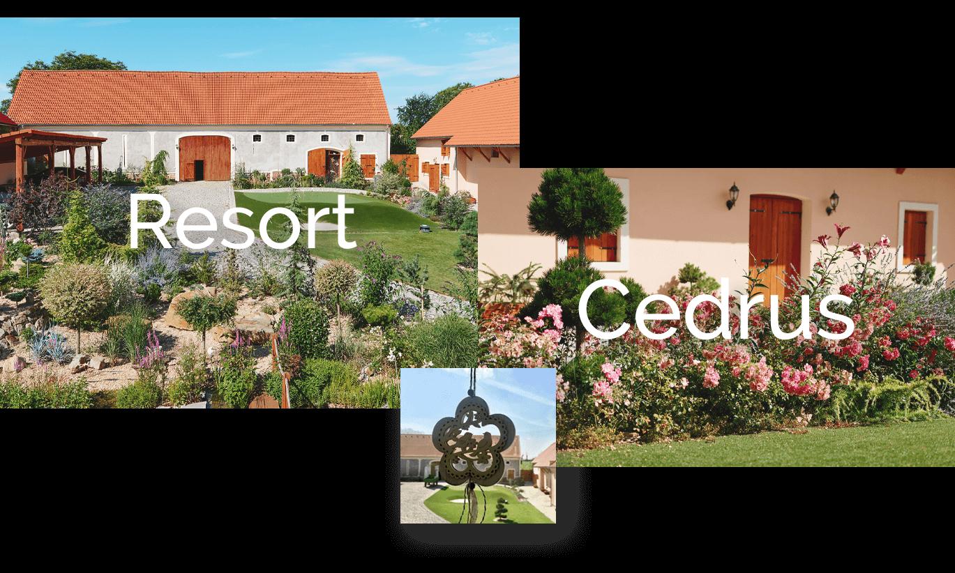 Ubytování Resort Cedrus